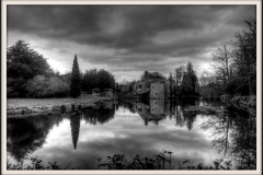 BLACK AND WHITE SCOTNEY by Tracy Hughes